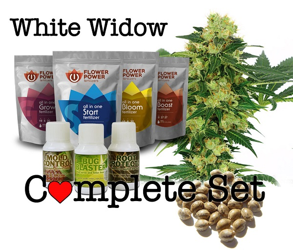 Cannabis Seeds Grow Set - Easy