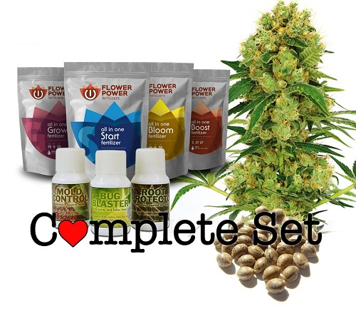 Which Is The Best Cannabis Grow Set