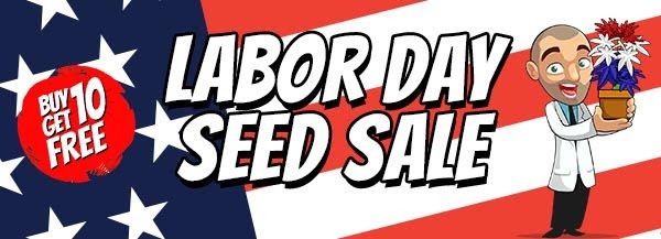 Labor Day Seeds Sale - Get Your Free Cannabis Seeds Online